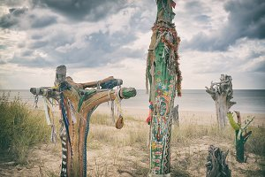 Colored pieces of tree trunks cast