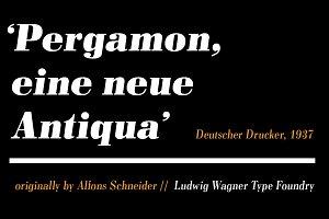 Pergamon Demi Italic