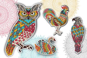 coloring  pages - birds