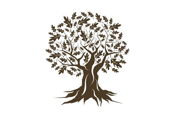 Vector oak tree...