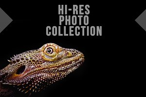 100 Useful Hi-Res Images Photo Pack