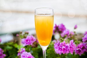 Bellini alcoholic cocktail