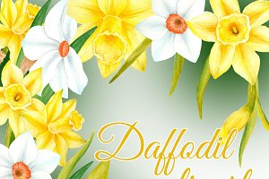 Watercolor daffodil flowers