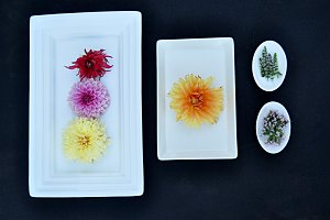flowers on white trays