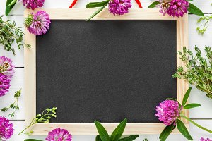 Blackboard and clover flowers.