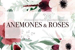 Anemones & Roses