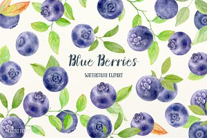 Watercolor Clipart Blueberry