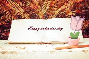 love and diary in valentine day
