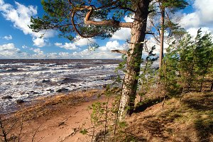 Baltic sea. Latvia