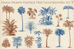 Hand Drawn Vintage Exotic Tree Set 2