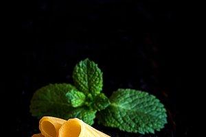 Italian pasta, macaroni