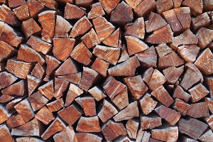 Chopped Wood Pile