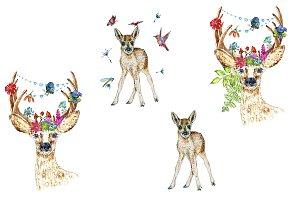 Deers Clipart, Roedeers Watercolor