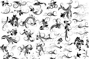 Floral Vectors, PNG & Ps Brushes