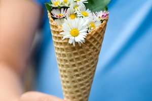Summer Daisies in Waffle Cone