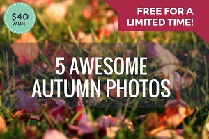 FREE BUNDLE: 5 Awesome Autumn Photos