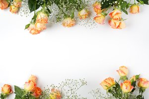 Frame with roses on white background. flat lay, overhead view.
