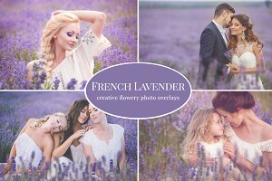 """French Lavender"" photo overlays set"