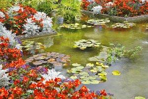 Silent pond in autumn