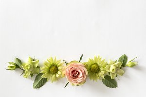 Frame  with  roses, green flowers and leaves on white background.