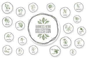 Ayurvedic Herb Collection