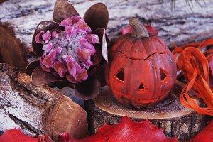 decorative pumpkin for Halloween with dried flowers