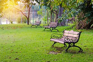 Benches in beautiful green park