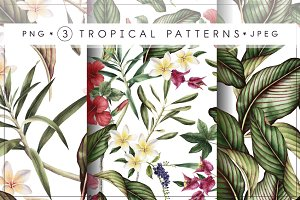 3 Tropical patterns & Floral set