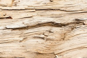 Vintage Wood Background Texture 18