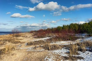 Early spring in the sand dunes