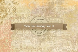 Why So Grungy V.2 Photoshop Brushes