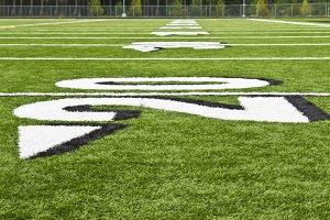 Brand New Sports Field