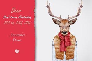 Deer / Winter time