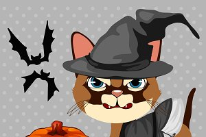 Angry cat with pumpkin and bats
