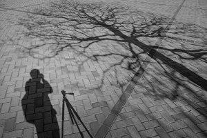 Shadow of Tourist Photographer
