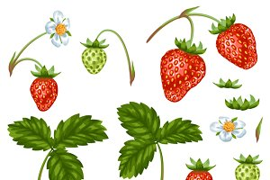 Set of red strawberries.