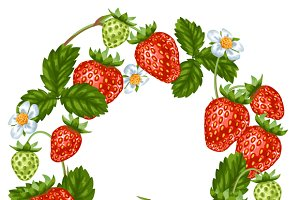 Frames with red strawberries.