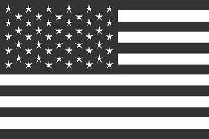 USA flag vector, American flag black