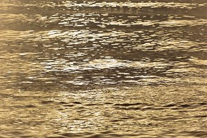 golden sea water