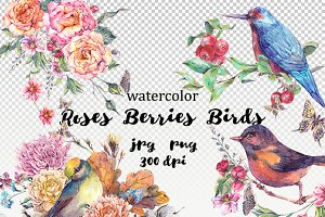Watercolor roses, berries and birds