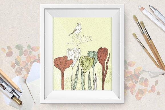 Spring flowers. Crocus.  - Illustrations