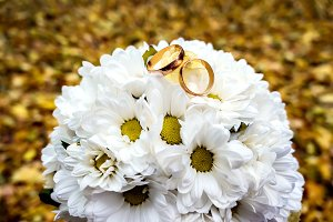Gold rings on a bouquet of daisies.