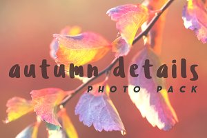 Autumn Details Photo Pack
