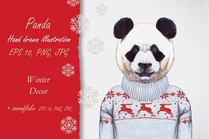 Panda / Winter time