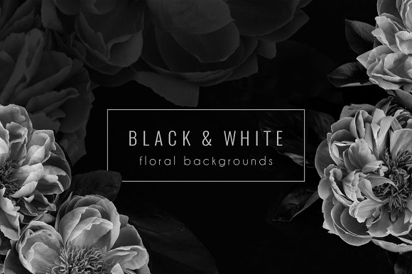 Download Floral Background PNG Stock Photos