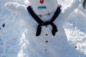 Snowman Wintertime