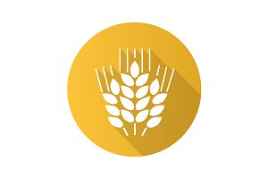 Wheat ears icon. Vector
