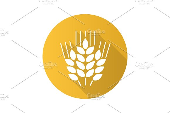 Wheat ears icon. Vector - Icons