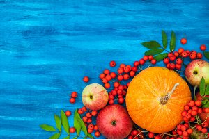 Pumpkins, apples and rowan-berry