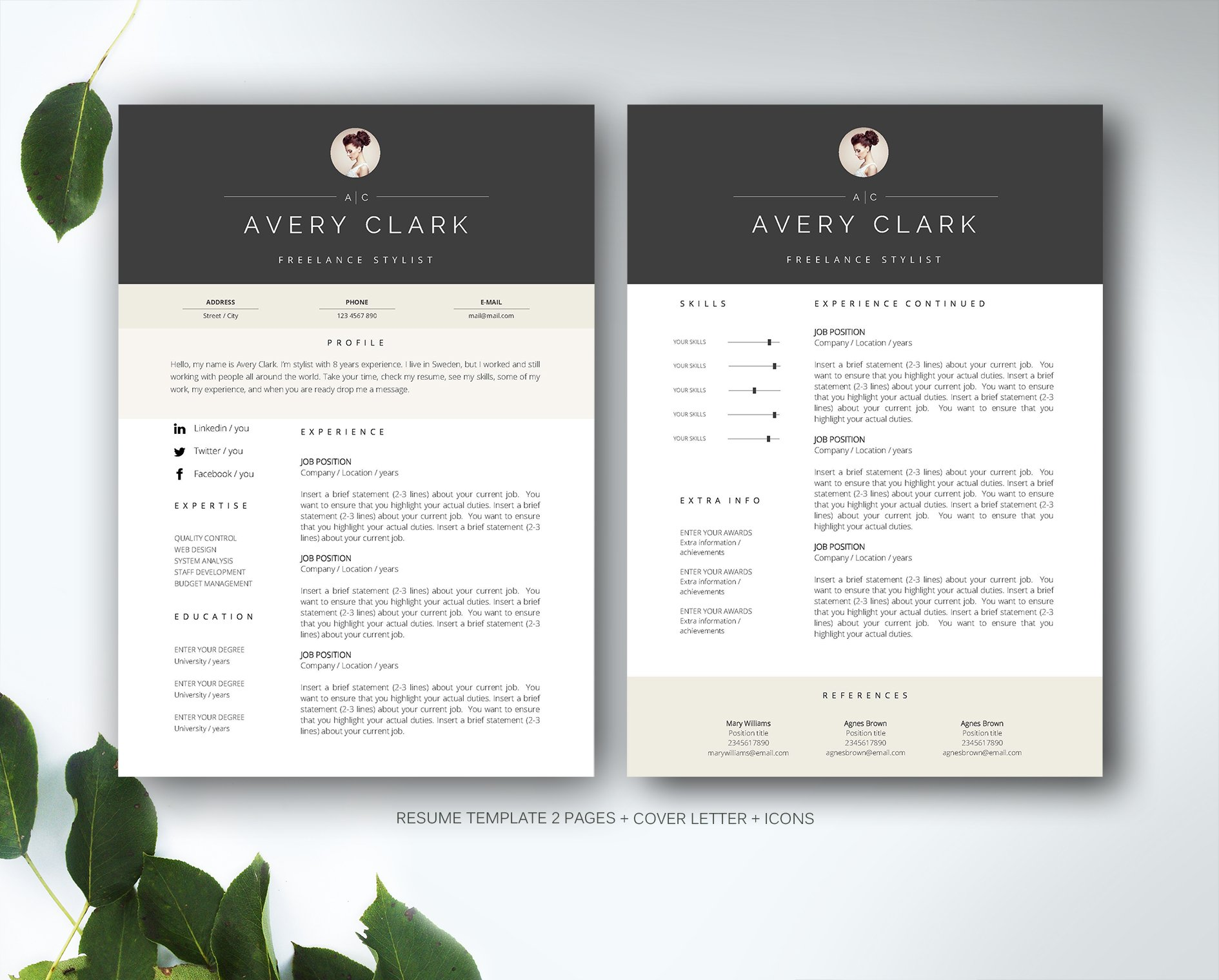 resume template for ms word resume templates creative market - Ms Word Format Resume